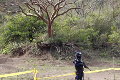 Hallan 19 cuerpos en 6 nuevas fosas clandestinas en Sinaloa (México)