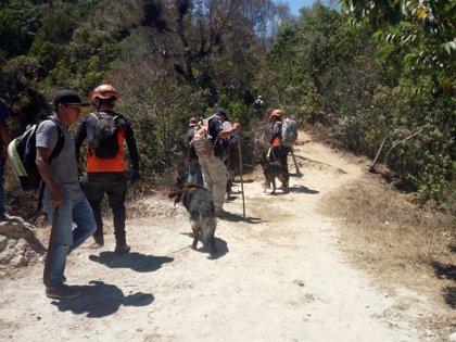 Hallan muerta a una turista británica en Guatemala