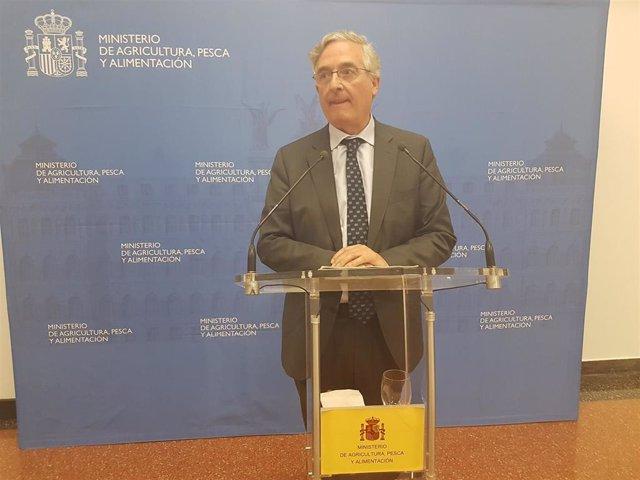 Aragón incluirá medidas para reducir la sobrepoblación de jabalíes en el próximo