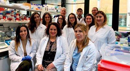 Investigadoras de la UPO reprograman directamente a neuronas las células de la piel de pacientes mitocondriales