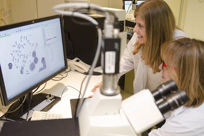 Madrid.- El Gregorio Marañón, único hospital en España acreditado para detectar alteraciones cromosómicas por radiación