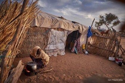 Las muertes maternas por cesárea son 50 veces mayores en África que en los países de altos ingresos