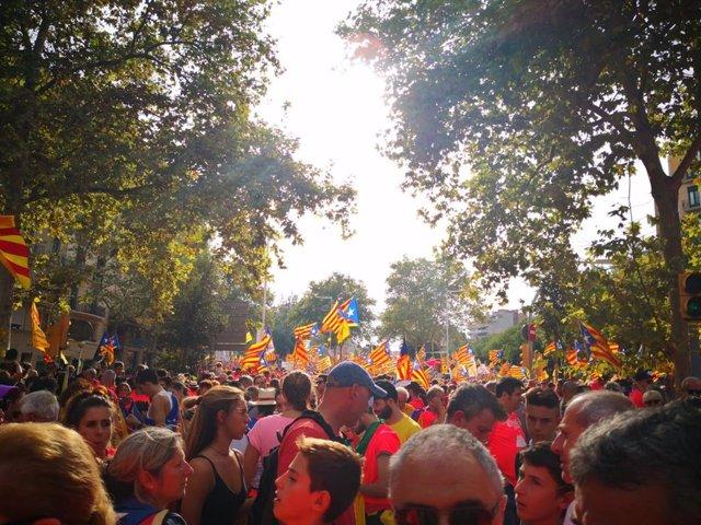 Manifestació de la Diada en la Diagonal