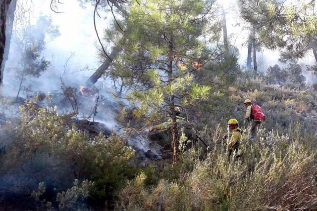 AMP.- Un incendio forestal en Paterna del Madera (Albacete) obliga a desalojar a