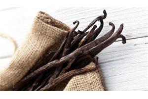 La vainilla, planta y aromatizante originario de México, podría desaparecer
