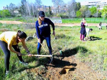 Natura 2000 y Amigos de la Ribera del Marco plantan doscientos árboles junto a la en la Ronda Sur de Cáceres