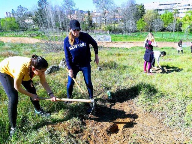Natura 2000 y Amigos de la Ribera del Marco plantan doscientos árboles junto a l
