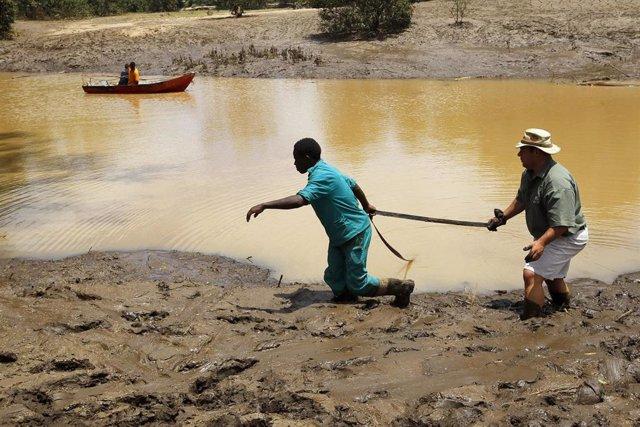 AMP.- África.- Guterres expresa su apoyo a Zimbabue, Malaui y Mozambique tras el