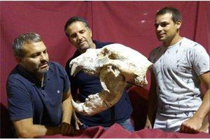 Hallan en Argentina los restos de un oso gigante con 700.000 años de antigüedad, el mayor carnívoro de Sudamérica