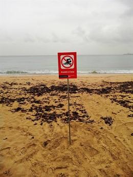Cort avisa de la prohibición de baño en la playa de Can Pere Antoni tras un vert