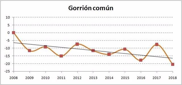 """La población de gorriones ha sufrido un """"declive alarmante"""" del 21% en los últim"""