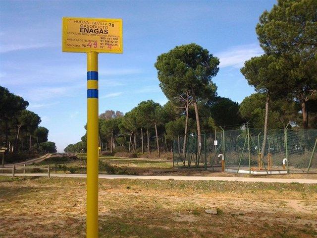 Proyecto de almacenamiento de Gas Natural en Doñana.