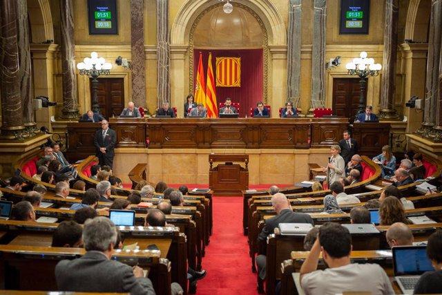 Agr.- El Parlament tramita una llei que protegeix oliveres monumentals plantejad