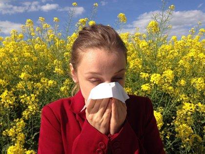 La primavera va a ser leve para los alérgicos al polen