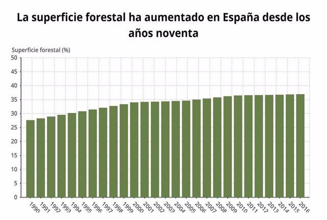 EpData.- Diez gráficos sobre la situación de los bosques en España y en el mundo