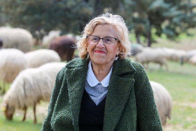 La alcaldesa de Madrid, Manuela Carmena, visita el rebaño de ovejas en la Glorie