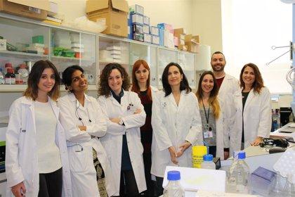 Identifican dos genes que pronostican la respuesta a la quimioterapia en cáncer de mama triple negativo