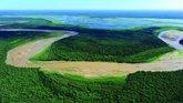 Foto: La destrucción de 'El Gran Chaco', el segundo pulmón verde de Sudamérica