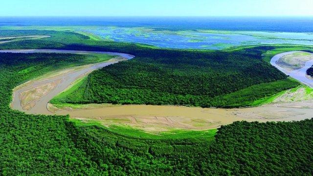 La destrucción de 'El Gran Chaco', el segundo pulmón verde de Sudamérica