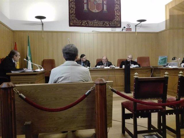 Granada.- Tribunales.- La Audiencia absuelve al acusado de acceder al historial