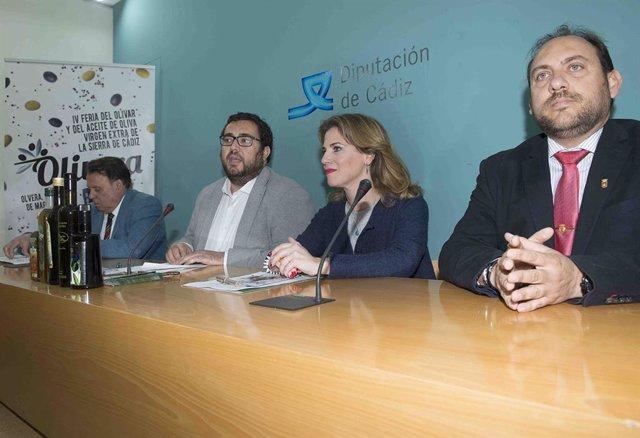 CádizAlDía.- Más de 30 empresas se darán cita en la feria del aceite de oliva vi