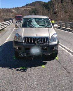 Un cotxe atropella mortalment un ciclista en envair el carril contrari a l'N-260 a Martinet de Cerdanya (ACN)
