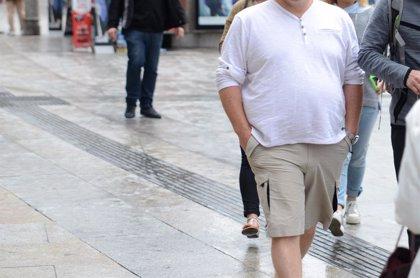 """La dieta tiene beneficios en la salud cardiovascular de obesos ante el """"estrés celular"""" por comer demasiado"""