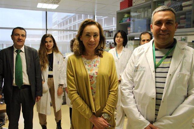 El CIBIR identifica un nuevo mecanismo implicado en el desarrollo de tumores