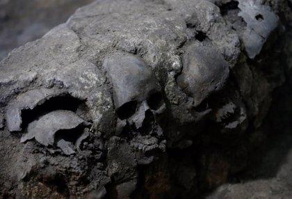 Un hallazgo de sacrificios aztecas en México podría ayudar a localizar la tumba de un emperador azteca