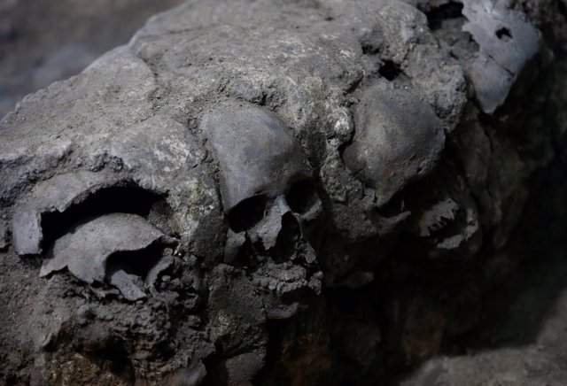 Skulls are seen at a site where more than 650 skulls caked in lime and thousands