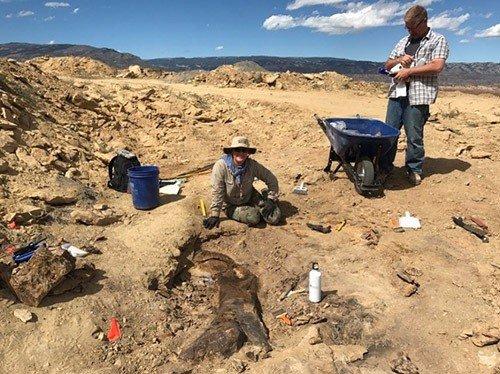 Paleontólogos de todo el mundo, reunidos en la 'Misión Jurásica'