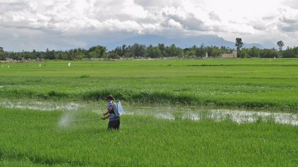 """Los riesgos para la salud de las mezclas de productos químicos artificiales """"están subestimadas"""""""
