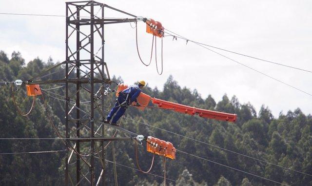 Un operario realiza trabajos en la red, EDP, electricidad, tendido eléctrico