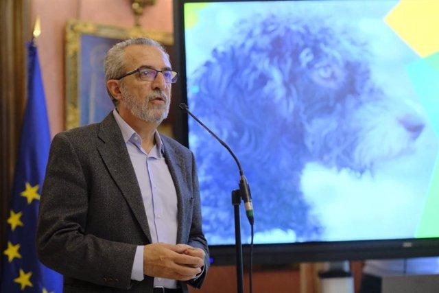 Sevilla.-La nueva ordenanza de animales recoge sacrificio cero, acogida y volunt