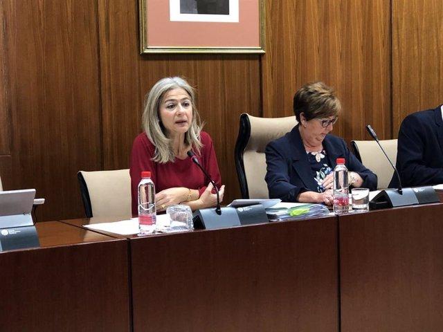 """Del Pozo apuesta por """"reorganizar"""" la Agencia de Instituciones Culturales para """""""