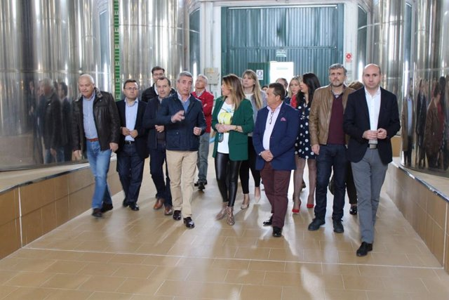 Díaz exige a la Junta que active medidas para proteger la producción de aceite d