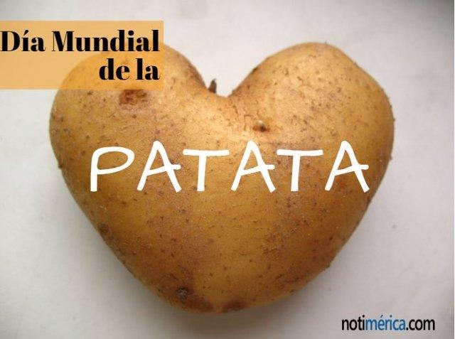 31 De Marzo: Día Mundial De Las Patatas, Aprende 5 Recetas Rápidas Y Sencillas