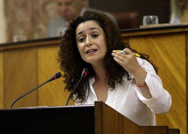 Cádiz.- Adelante Andalucía defenderá en el Parlamento que se declare BIC a vario
