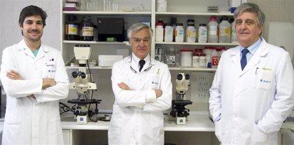 Hospital Ruber Internacional inicia un programa para identificar mutaciones y anticipar un cáncer urológico