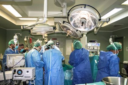 España ronda ya los 400.000 donantes de médula ósea, dos años antes de lo previsto