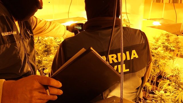 Granada.- Sucesos.- Siete investigados por cultivo de droga en una nueva operaci