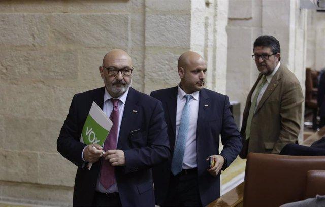 """Vox propone encargar la auditoría de la Junta andaluza a """"expertos en corrupción"""