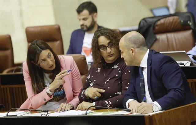 PP-A critica que Susana Díaz no asistiera este miércoles al Pleno del Parlamento