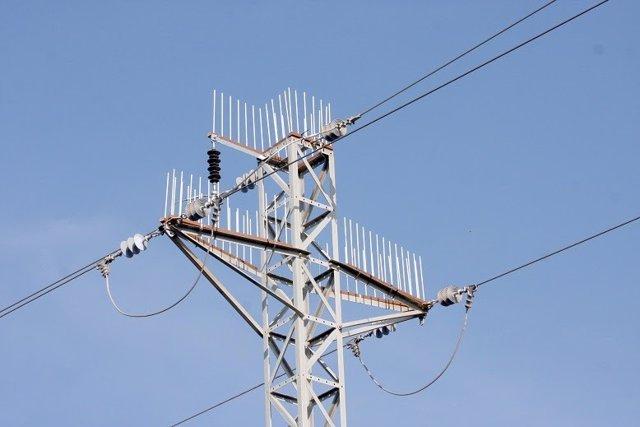 Endesa instala 15 dispositivos antipuesta de aves en Tarragona