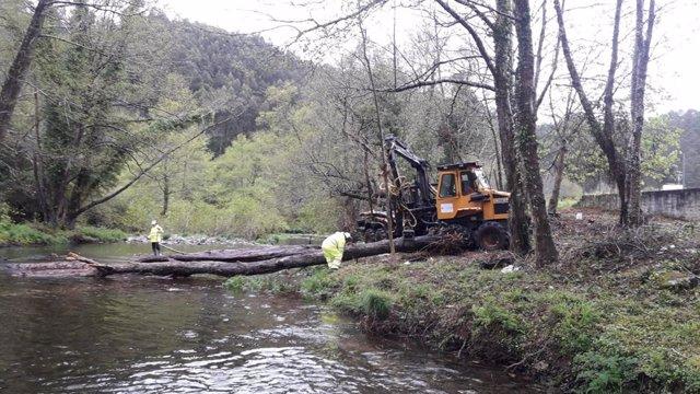 La CHC inicia la limpieza de los cauces del río Esva en el concejo de Valdés
