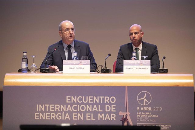 Canarias pedirá al Gobierno central incluir infraestructuras para evacuar la ene