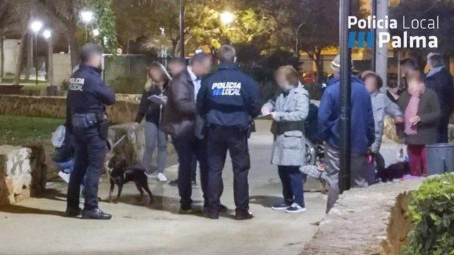 La Policia Local aixeca 118 actes a propietaris de gossos per incivisme