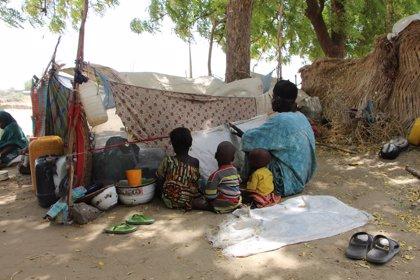 MSF alerta de la situación desesperada de 30.000 desplazados en Monguno (Nigeria)