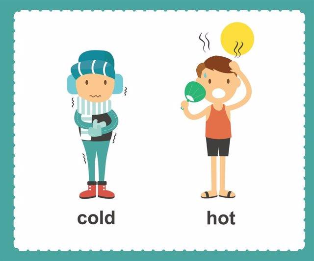 ¿Por Qué Hay Personas Que Son Más Calurosas O Frioleras?