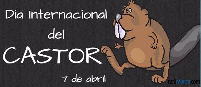 7 De Abril: Día Internacional Del Castor, ¿Quieres Saber Algunos Datos Curiosos